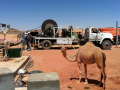 WellJet - Jordan - Camel